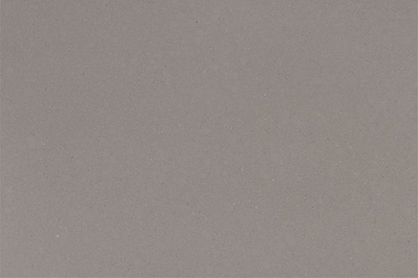 Fossil Gray – Quartz